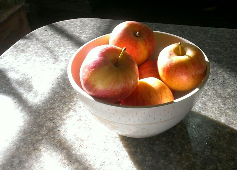 a bowl of apples in the morning light